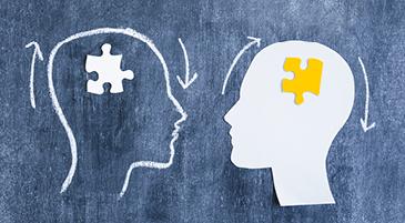 Due cervelli attivano le stesse aree della corteccia